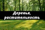 Деревья, трава, растительность для диорам