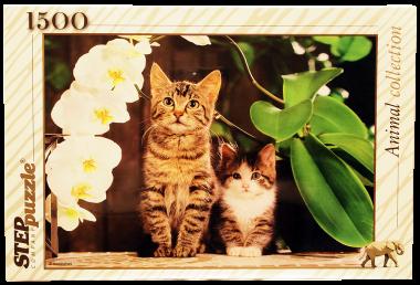 Пазл «Котята и орхидея» 1500 элементов