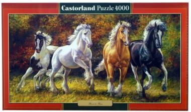 4000 Лошади Castorland
