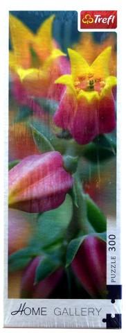 пазл Расцветающие цветы