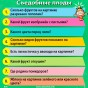 Сундучок знаний викторина для детей